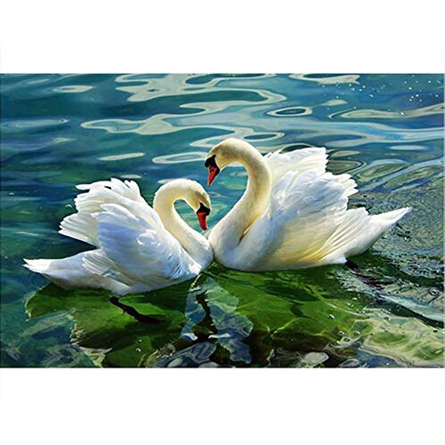 (Paint by Numbers for Kids Adults DIY Oil Painting Kit Beginner - Swan in the lake 16