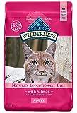 outdoor food - BLUE Wilderness Adult Grain Free Salmon  Dry Cat Food 11-lb