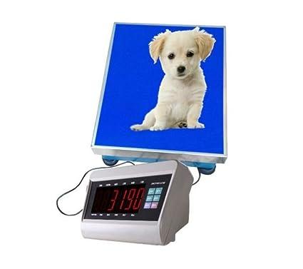 300 kg Vet veterinario Animal Greyhound perro escala báscula de suelo 400 x 500