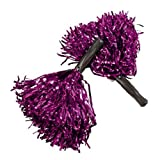 Metallic Purple Pom Poms (1 dz) by Fun Express