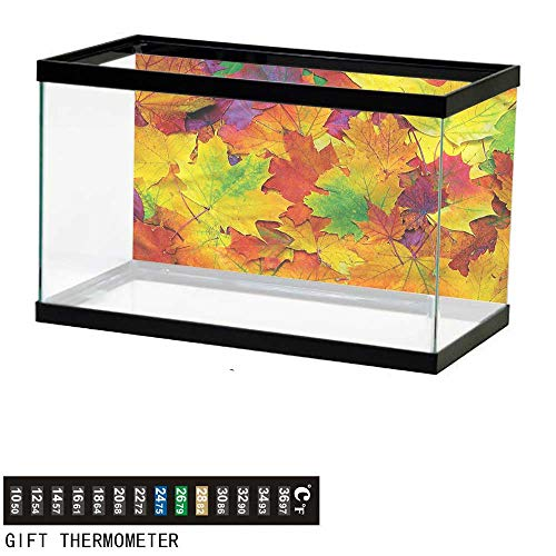 bybyhome Fish Tank Backdrop Fall,Colorful Maple Leaves,Aquarium Background,48