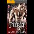 Blackjack Bears: Pierce (Koche Brothers Book 1)
