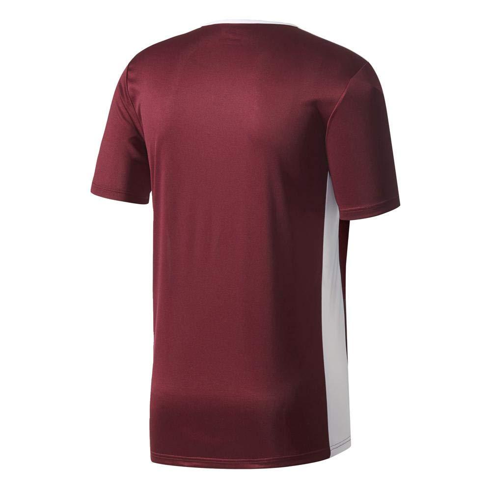 adidas Entrada 18 JSY T-Shirt, Hombre