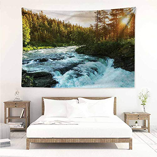 - Fashion Tapestry,European Sunrise Springtime Pines,Wall Tapestry for Bedroom,W59x39L