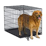 """MidWest Homes for Pets New World 42"""" Folding Metal Dog Crate, Includes Leak-Proof Plastic Tray; Dog Crate Measures 42L x 28W x 30H Inches, Fits Large Dog Breeds"""