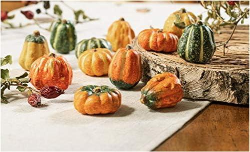 Herbstdeko K/ürbis 12 St/ück K/ürbismix Dekok/ürbis Herbstfigur K/ürbisse Tischdeko f/ür den Herbst