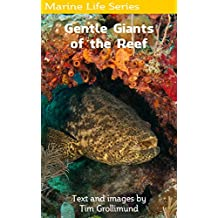 Goliath Grouper... Gentle Giants of the Reef