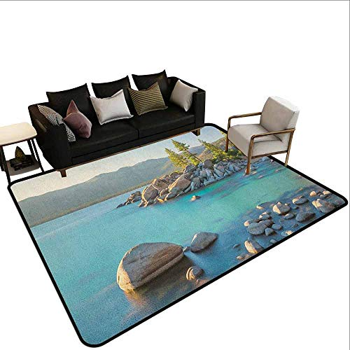 (Indoor Carpet Lake,Pastoral Spring Time Scenery in Provincial Countryside Lake Beach Shallow Water Theme, Blue Grey)