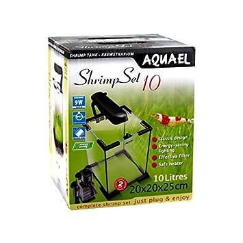 Aquael Acuarios Conjunto De Camarones - 10 Litros: Amazon.es: Productos para mascotas