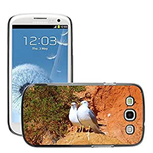 Hot Style Cell Phone PC Hard Case Cover // M00115808 Gulls Waterfowl Landscape Animal // Samsung Galaxy S3 S III SIII i9300