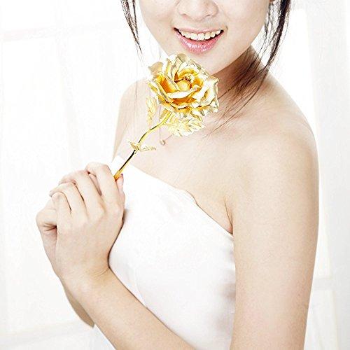 "ZJchao 24k Gold Foil 11"" Rose Flower Best Gift for Your Lover Wife or Mom"