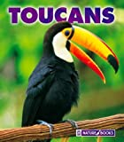 Toucans, Mary Ann McDonald, 1592966527
