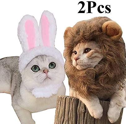Amazon.com: Paquete de 2 pelucas de león para disfraz de ...