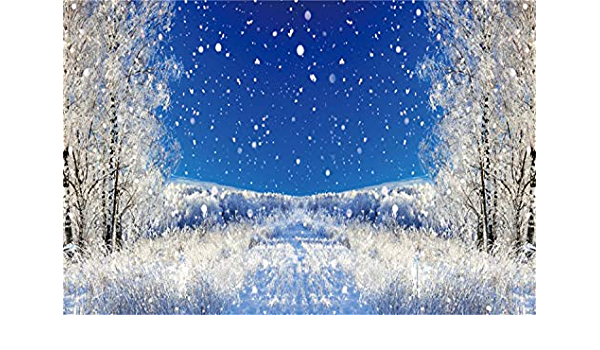 Leowefowa Winter Park Road Frosty Trees Bench Backdrop for Photography 9x6ft Vinyl Winter Snowscape Background Child Adult Photo Shoot Wintery Xmas Party Banner Scenic Wallpaper
