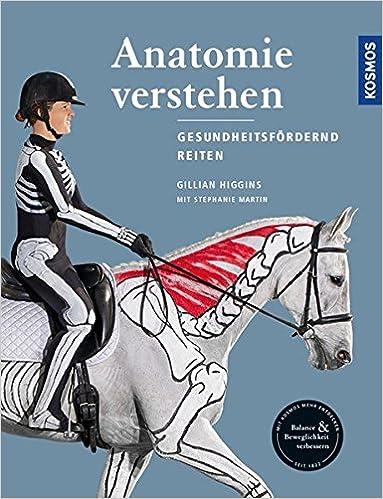 Anatomie verstehen - Pferde gesundheitsfördernd reiten - Das ...