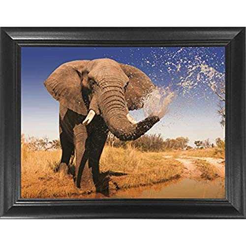 Elephant 3D Poster Wall Art Decor Framed Print   14.5x18.5   Lenticular Posters & Pictures   Memorabilia Gifts for Guys & Girls Bedroom   Nature Safari Scene of African Elephant Spraying Water