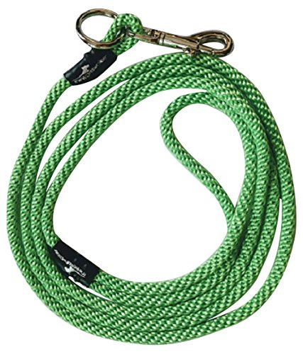 Weiss Walkie No Pull Dog Leash, Small, Neon Green by Weiss Walkie
