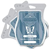 Scentsy Mystery Man Wax Bar 3-Pack