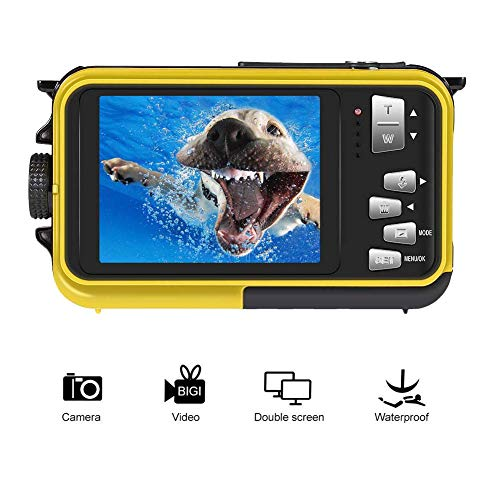 Best Digital Underwater Camera Under 100 - 9