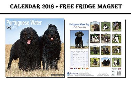 portuguese water dog calendar - 5