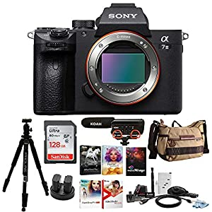 Sony Alpha a7 III Mirrorless Digital Camera (Body Only) with Accessory Bundle