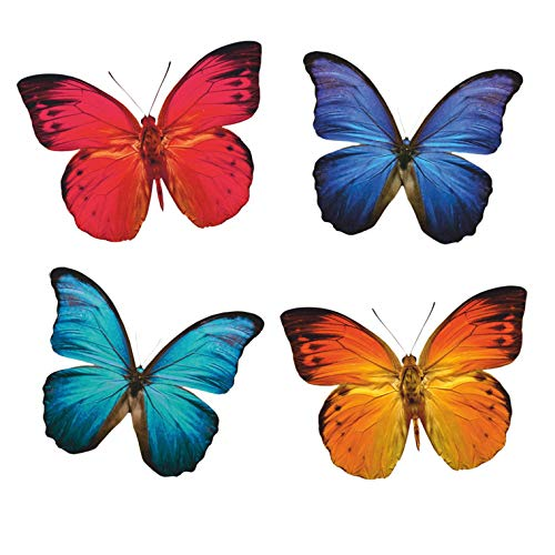 - Anti-Collision Window Clings to Prevent Bird Strikes on Window Glass - Butterfly Window Clings (8 per Set)