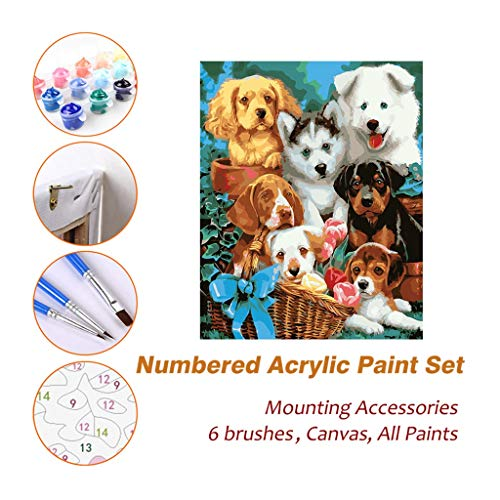 Acrylic Oil Painting Paint by Numbers Kits Sets with Frame for Kids Adults Beginner Artist, Puppies in Basket DIY Wall Art Picture Photography Brush Supplies 613