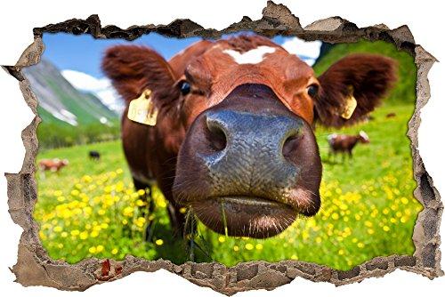Pixxprint 3D_WD_S2205_62x42 witzige Kuh auf wundervoller Bergwiese Wanddurchbruch 3D Wandtattoo, Vinyl, bunt, 62 x 42 x 0,02 cm