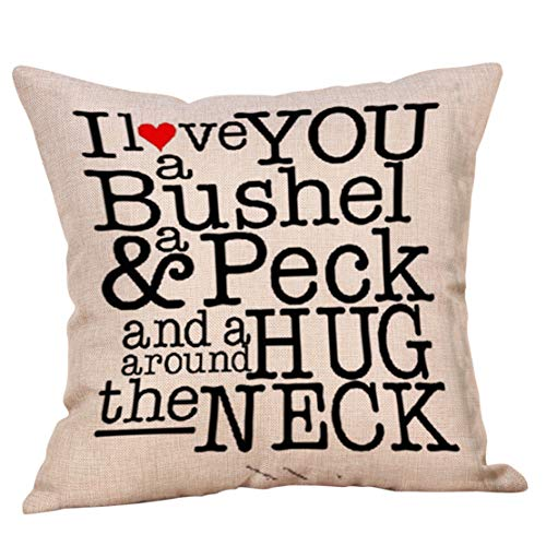 Mikey Store Valentines Day Throw Pillow Case Sweet Love Cushion Cover ()