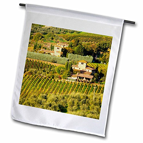 3dRose Danita Delimont - Vineyards - Italy, Tuscany, Chianti, Autumn Vineyard Rows with Bright Color - 12 x 18 inch Garden Flag (fl_277666_1) (Hanging Tuscany Outdoor)