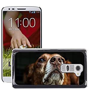 Super Stella Slim PC Hard Case Cover Skin Armor Shell Protection // M00146093 Dog Snout Brown Fur Hybrid Animal // LG G2 D800 D802 D802TA D803 VS980 LS980