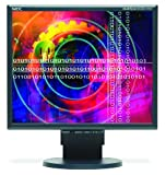 "NEC MultiSync LCD2170NX-BK 21"" LCD Monitor"