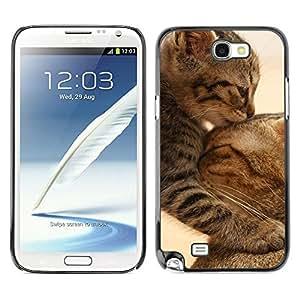 - MOTHER FURRY CUTE CAT KITTEN BABY - - Monedero pared Design Premium cuero del tir???¡¯???€????€?????n magn???¡¯&Atild