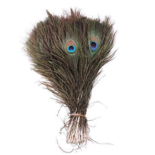 ❤Lemoning❤Lots 10PCS Natural Real Peacock Tail Eye Feathers DIY Crafts23-30cm/10-12Inches