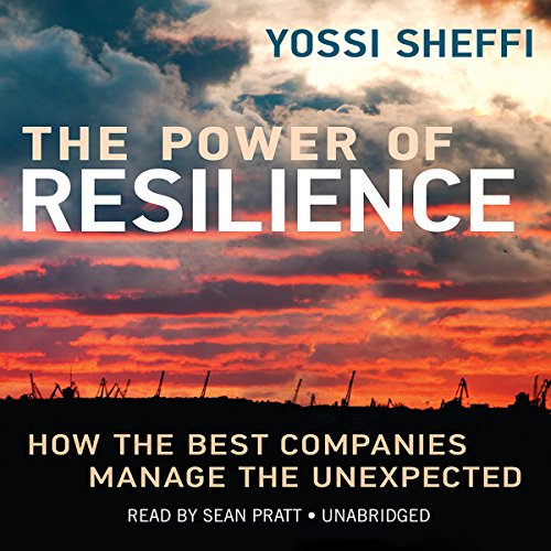 The Power of Resilience: How the Best Companies Manage the Unexpected: Library Edition by Blackstone Audio Inc