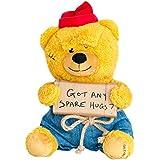Hollabears Hobo Got Any Spare Hugs? Teddy Bear Plush - Funny Idea The Girlfriend, Boyfriend Friend