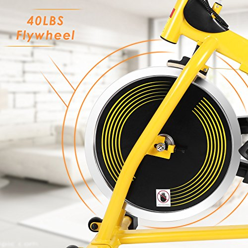 Gold S Gym Drive Belt Replacement: Belt Drive Indoor Cycling Bike, Best Spin Bike For Home (S