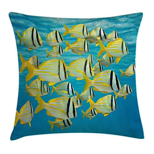Fish Throw Pillow Cushion Cover by Lunarable, Atlantic Porkfishes with Tails and Forehead in Western Nocturnal Species Nature Imagery, Decorative Square Accent Pillow Case, 26 X 26 Inches, - Square Forehead