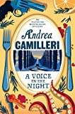 A Voice in the Night: An Inspector Montalbano Novel 20