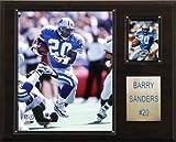 NFL Barry Sanders Detroit Lions Player Plaque