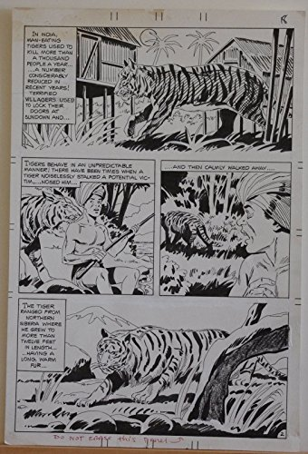 Original art, unSigned, BENGAL TIGER, 11x16, Published, lots more art in store