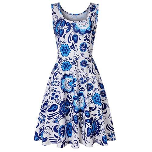 (Xinantime Women's O-Neck Sleeveless Print Dress Retro Floral Dress Evening Dress Blue)
