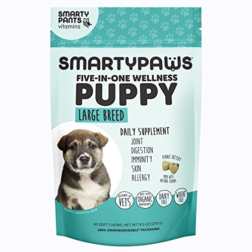 SmartyPaws Dog Supplement Chew- Glucosamine & Chondroitin + MSM for Joint Support, Fish Oil Omega 3 (EPA & DHA), Probiotics, Organic Turmeric: Puppy Large Breed - by SmartyPants Vitamins - 60 ct