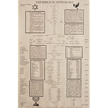 Amazon.com: Genealogy of Jesus Laminated Wall Chart: Posters & Prints
