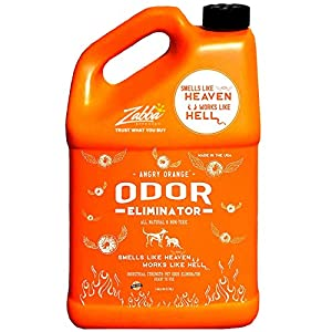ANGRY ORANGE Ready-to-Use Citrus Pet Odor Eliminator Pet Spray - Urine Remover and Carpet Deodorizer for Dogs and Cats 30