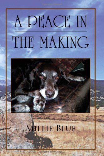 A Peace in the Making ebook