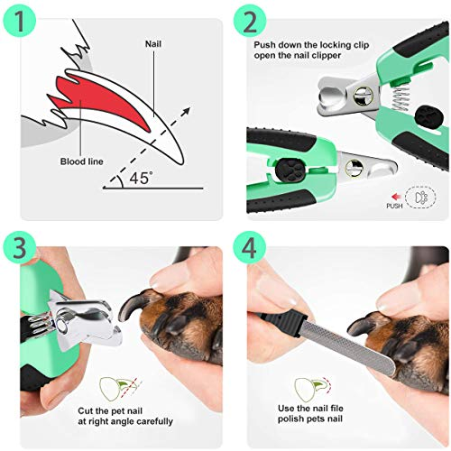 Bivan Dog Nail Clippers and Trimmer with Safety Guard Over Cutting Protection Free Nail File, Razor Sharp Blade Stainless Steel Blade Non Slip Handles Professional Grooming Tool for Pet