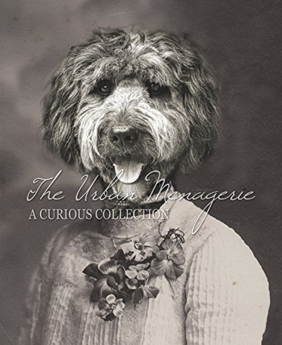 [Anthropomorphic Portrait, Portuguese Water Dog Art Print, Multiple Sizes Available, Unframed] (Inanimate Object Costume)