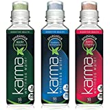 Karma Wellness Water Priobiotics (Variety Pack)