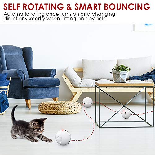 DELOMO Smart Interactive Cat Toy Ball, Automatic Rolling Ball, USB Rechargeable Cat Light Toy, 360 Degree Self Rotating Ball with Spinning Light, 2019 Upgraded Cat Exercise Chaser Toy 3